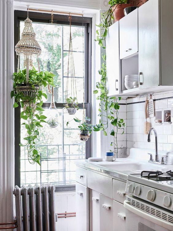 d co succombez la tendance des plantes suspendues. Black Bedroom Furniture Sets. Home Design Ideas
