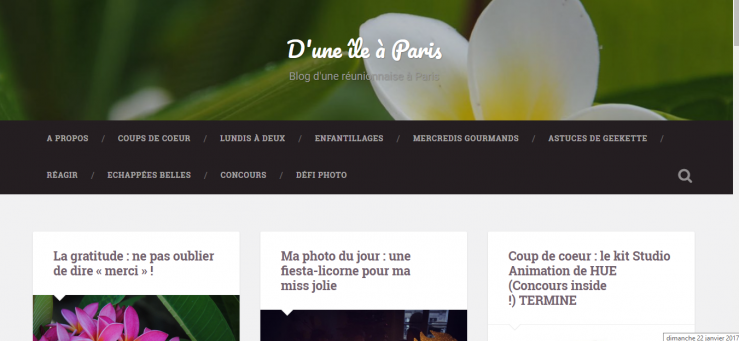 blog-dune-ile-a-paris