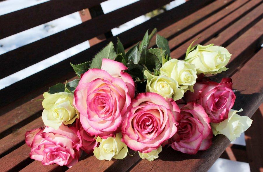 Bouquet de fleurs sur un banc