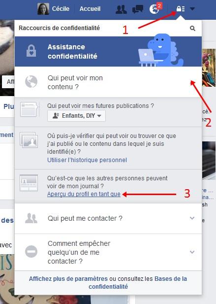 Facebook voir en tant que