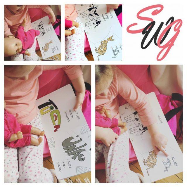 livre-calligranimaux-editions-chat-minou-swg