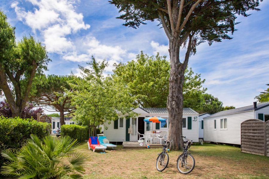 Mobilhomes dans le Camping de l'Océan sur l'île de ré